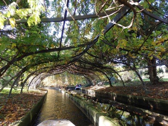 Jardin D Acclimatation Littlespree